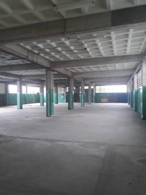 Edificio Industrial en El LLanito
