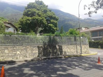 TERRENO LOS PALOS GRANDES