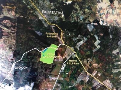 ZIPACON  FINCA AGRICOLA, GANADERA Y TURISTICA