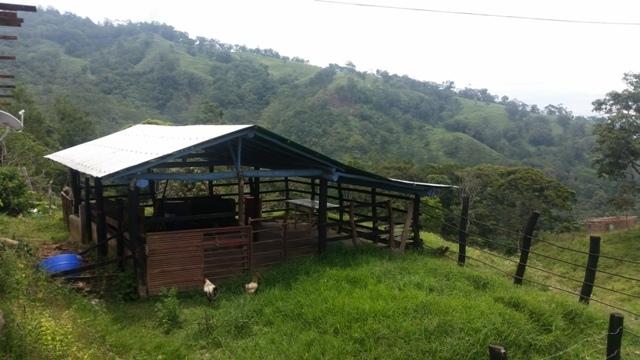 Cordero - Haciendas y Fincas