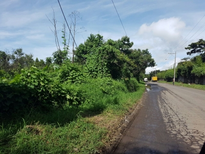 Terreno para desarrollo Orilla de carretera