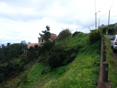 Terreno de 880 mts2 em Camacha