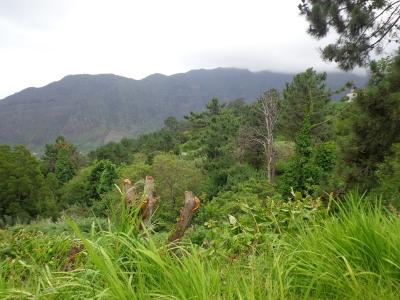 Terreno com 900 metros em São Vicente