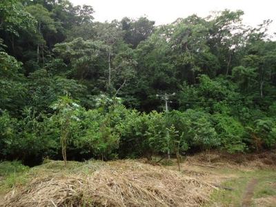 Terreno desarrollo habitacional Car Puerto La Libertad