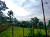 Carretera via Rubio - Terrenos y Parcelas