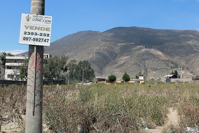 Terreno de venta cooperativa huasipungo,mitad del mundo,1.400m2 $79.000 Inf: 2353232,0997592747,0958838194
