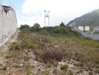 Vendo terreno La Marca, mejor Urbanización de la Mitad del Mundo, 490m2 oportunidad $36.000 2353232,0997592747,0958838194