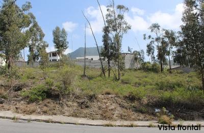 Terreno La Marca, mejor zona Mitad del Mundo, 623m2, bien ubicado,todos los servicios $49.000 2353232,0997592747,0958838194