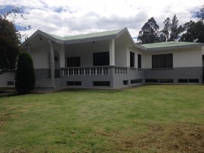 Amplia casa con jardín y piscina
