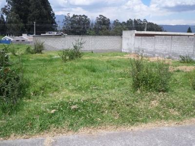 VALLE DE LOS CHILLOS - DE OPORTUNIDAD EN 55.000 HERMOSO TERRENO TOTALMENTE PLANO.