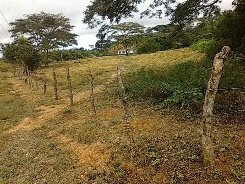 Venta de Terreno en Tucacas  10.000Mts2 Para Inversionistas