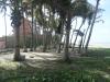 Tucacas - Terrenos y Parcelas