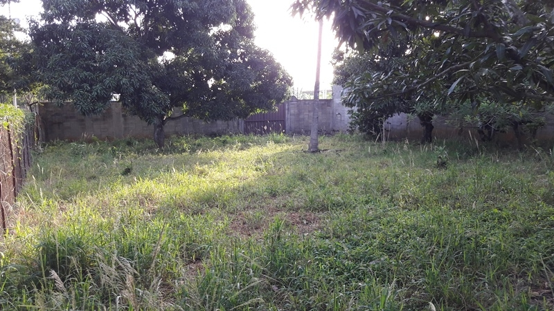 La Piedad - Casas o TownHouses