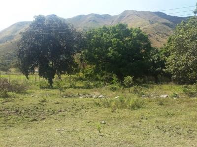 Terreno de uso comercial en Venta en Yagua. En la Variante