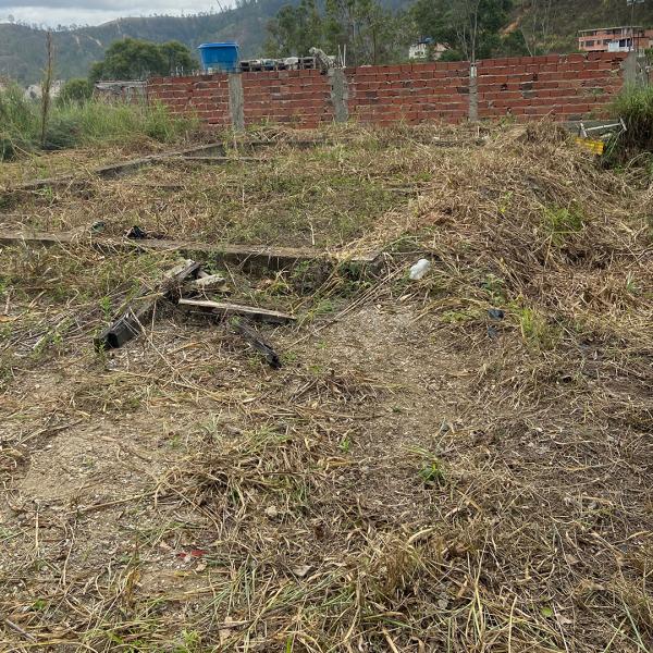 Carrizal - Terrenos y Parcelas