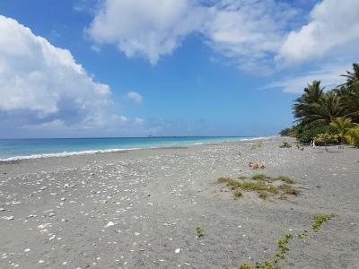 Hermoso Terreno en Playa Linda Nizao