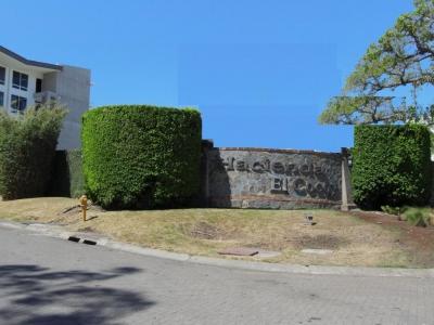 Vendo Lote en Condominio Hacienda El Cocoy en Guachipelín de Escazú