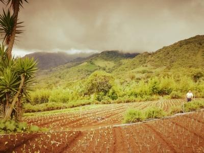 Citymax vende en Escazú hermoso terreno con vistas espectaculares a Valle y Montaña