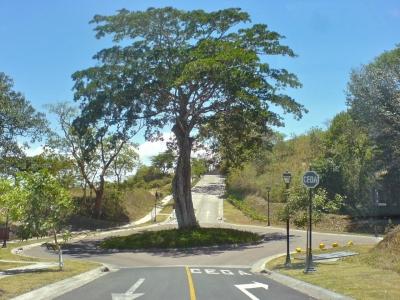 CityMax vende Terreno en Brasil de Santa Ana