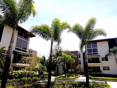 CityMax alquila Apartamento en Condo en Pozos Santa Ana