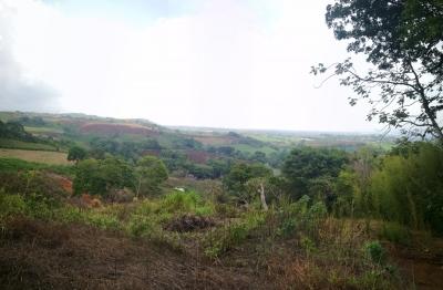 Se Vende Terreno en Poro Grecia Alajuela, 3,501 Mts