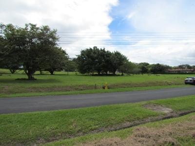 Lote Residencial en Venta, Hacienda los Reyes Golf. ID 9360