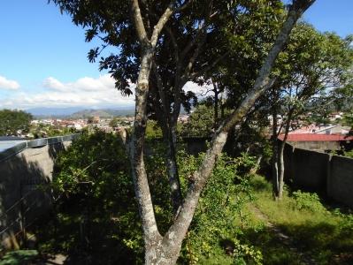 CityMax  vende Casa con amplio jardín Alajuela centro