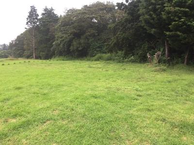 Terrenos para quintas en Poás de Alajuela