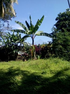 Se venden 3 terrenos en Quintas Vallarta, Carretera a Taxisco, Escuintla