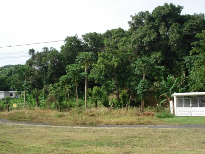 Precioso Terreno en Condominio, Tiquisate, Escuintla
