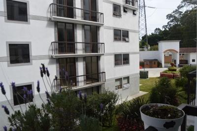 Citymax Renta bello y moderno apto. en Carretera a El Salvador por la Olmeca