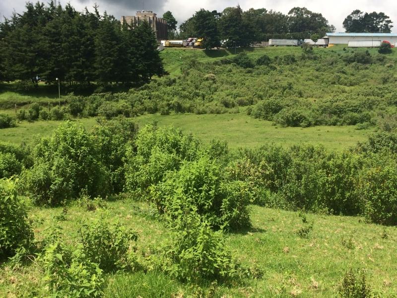 Terreno De 3 Manzanas En Venta Km 16 5 Carretera A El Salvador