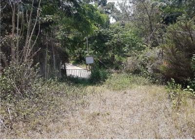 Vendo Terreno Ideal Para Desarrollo Residencial Dentro de Santa Rosalía