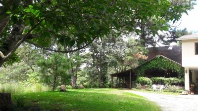 Casa Tipo Cabaña + Apartamento en Muxbal