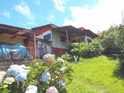 CASAS se venden,  Concepción      San Rafael Heredia.