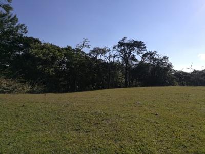 CityMax Vende Terreno Amplio en Tilaran de Guanacaste!