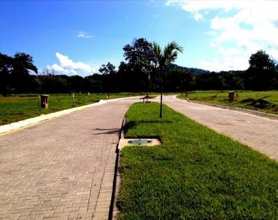 CityMax Vende Terreno en Punta Leona (dentro de Condominio)