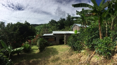 Venta de Lote Grande en San Cristóbal Norte, Desamparados, San Jose.