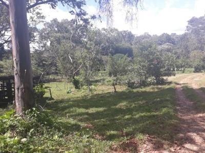 Finca en Costa Rica Pérez Zeledón cerca del Centro. tamaño total 38ha 7225.650m² / A tan solo ? 9,000,000 la hectarea