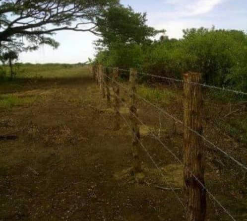 Higuerote - Terrenos y Parcelas