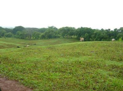 Se Vende Terreno de 14 hectáreas en Chitre a $15 el metro