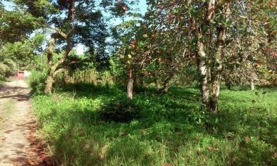 Se vende terreno en Bocas del Toro #18-6814**HH**