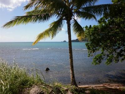 Terreno con vista a la Bahía en Colón