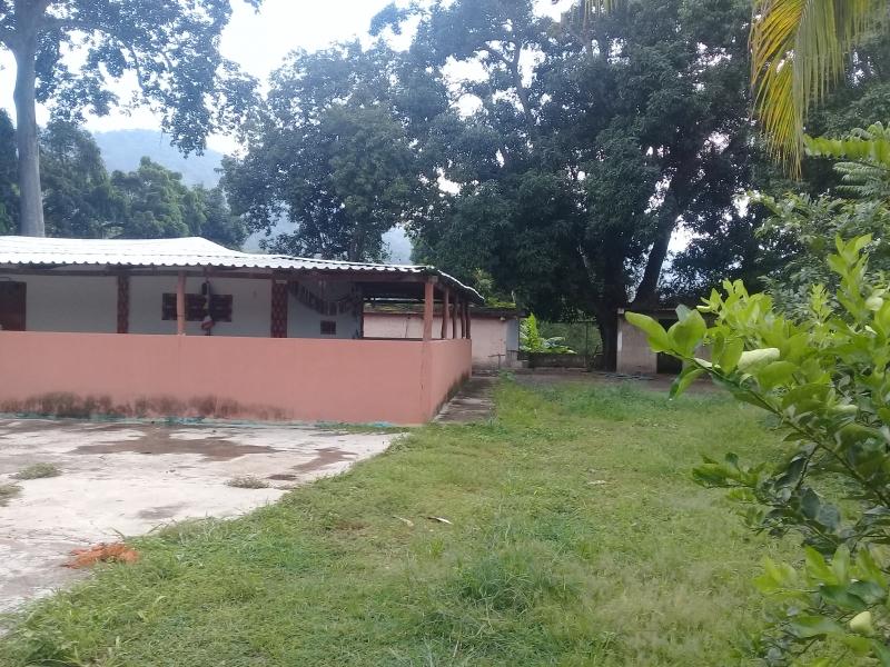 Puerto La Cruz - Haciendas y Fincas