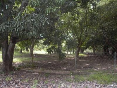 Terreno comercial en venta en Santa Clara