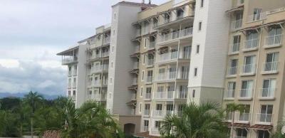 18-10 apartamento venta en Buenaventura  jack