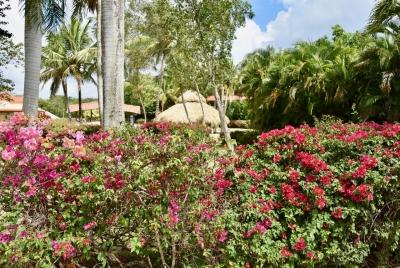 Apartamentos en alquiler a La Romana, cerca de Estancia Golf Resort