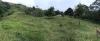 El Abejal - Terrenos y Parcelas