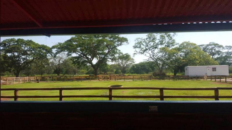 Ciudad Ojeda - Haciendas y Fincas
