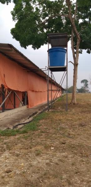Abejales - Haciendas y Fincas